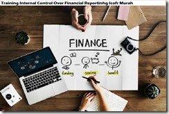 training financial reporting governance murah