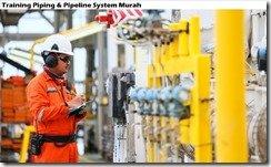 training base on asme b31 codes & api579 standards murah